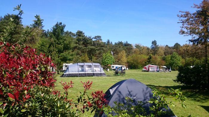 Minicamping 't Zevenbosch
