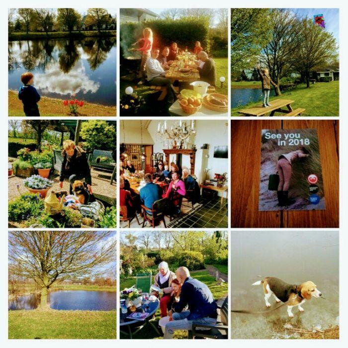 Het Farm-House Green-Park: ontbijthotel en bungalows